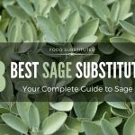 8 Best Sage Substitute Options: Your Complete Guide to Sage