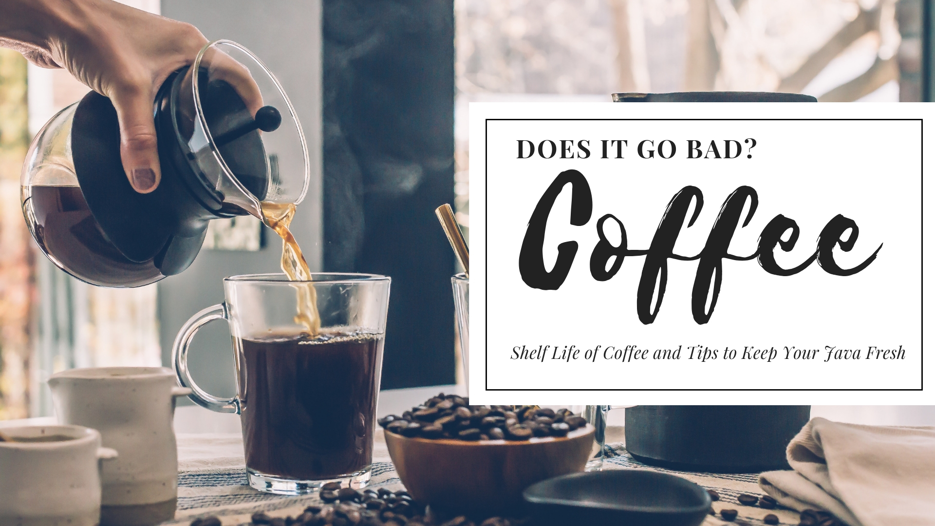 Does Coffee Go Bad? Shelf Life of Coffee and Tips to Keep Your Java Fresh