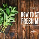 How to Store Fresh Mint (And Make Your Fresh Herbs Last Longer)