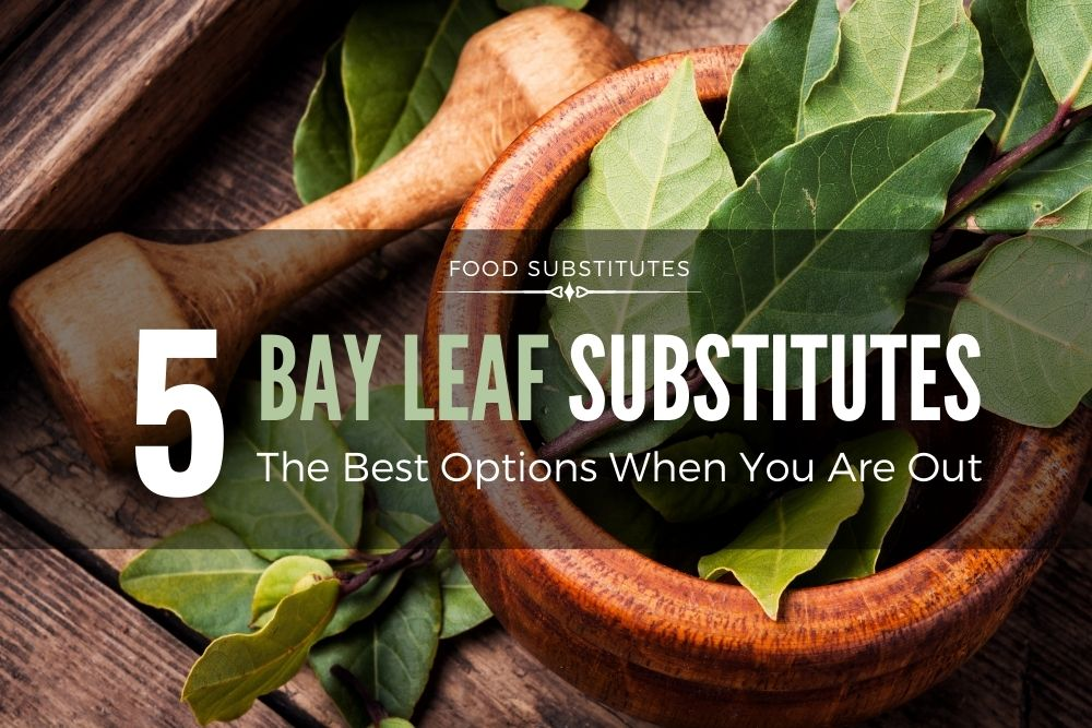 The Best Bay Leaf Substitute (5 Options)