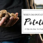 When Do Potatoes Go Bad: Potato 101